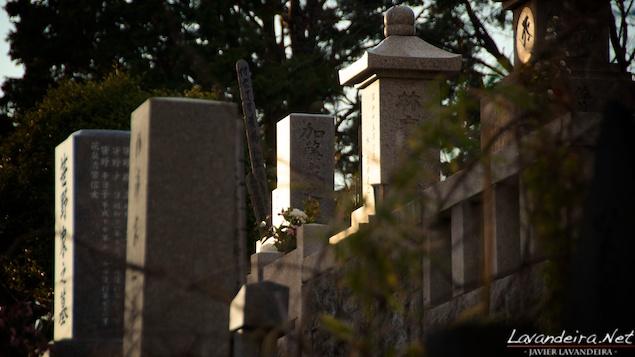 aoyama_graveyard- 002