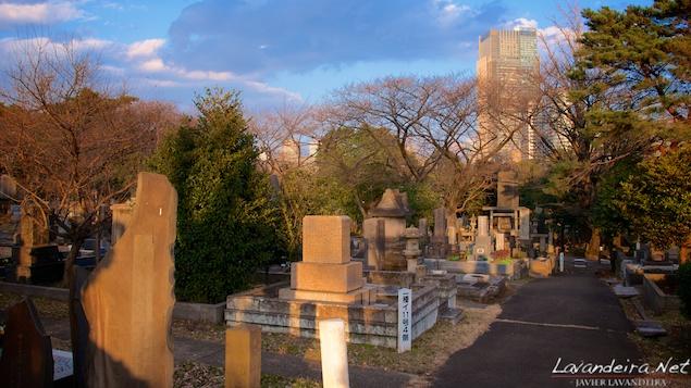 aoyama_graveyard- 004