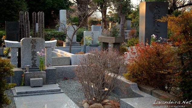 aoyama_graveyard- 006