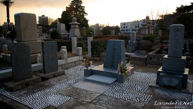 aoyama_graveyard- 015
