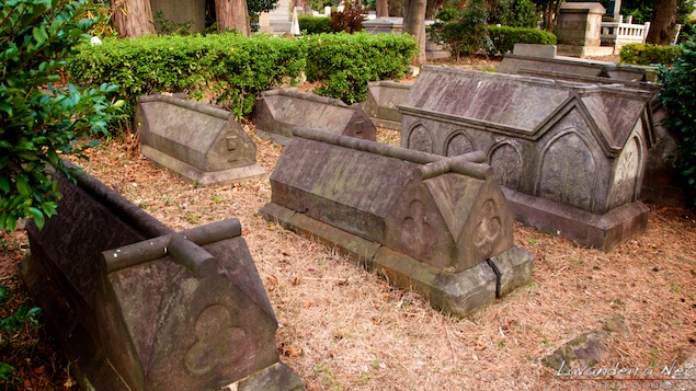aoyama_graveyard- 024