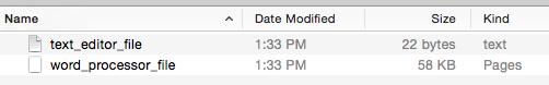 text_file_vs_word_processor_document